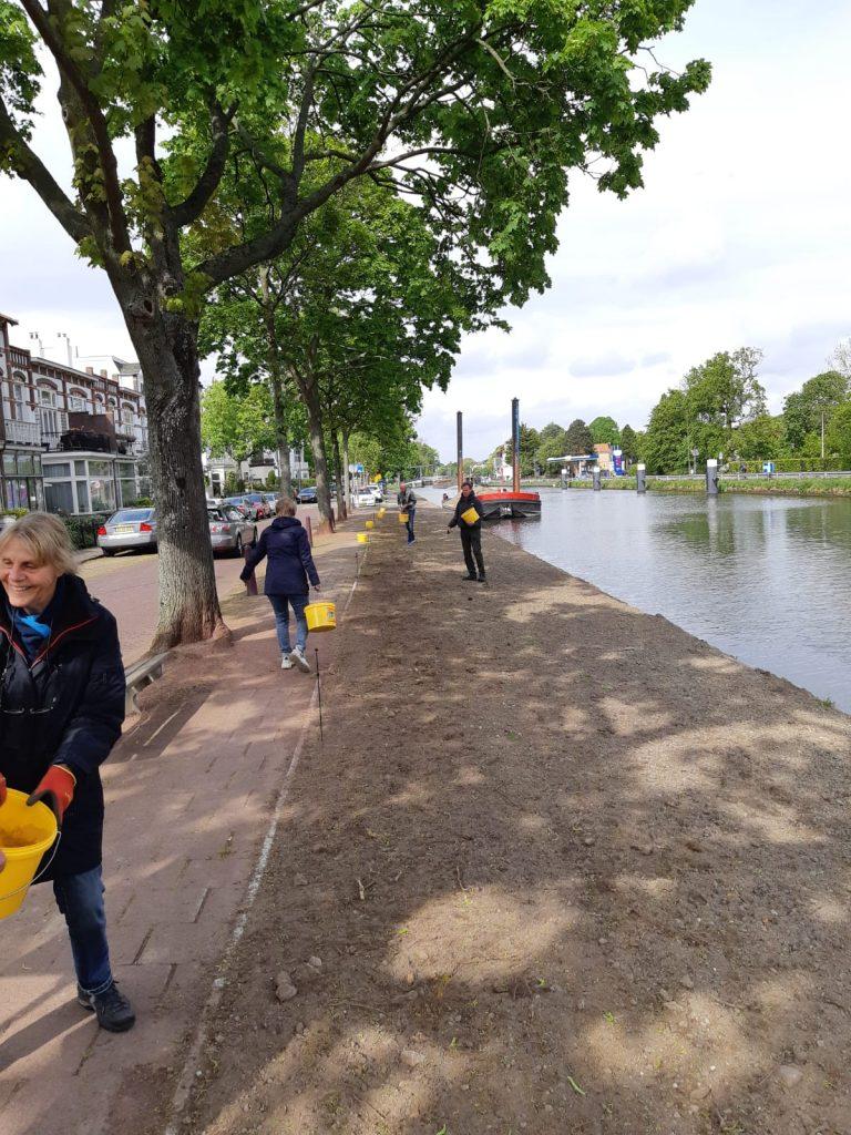 Inzaaien Nassaukade Rijswijk