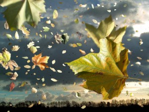 herfststorm 3